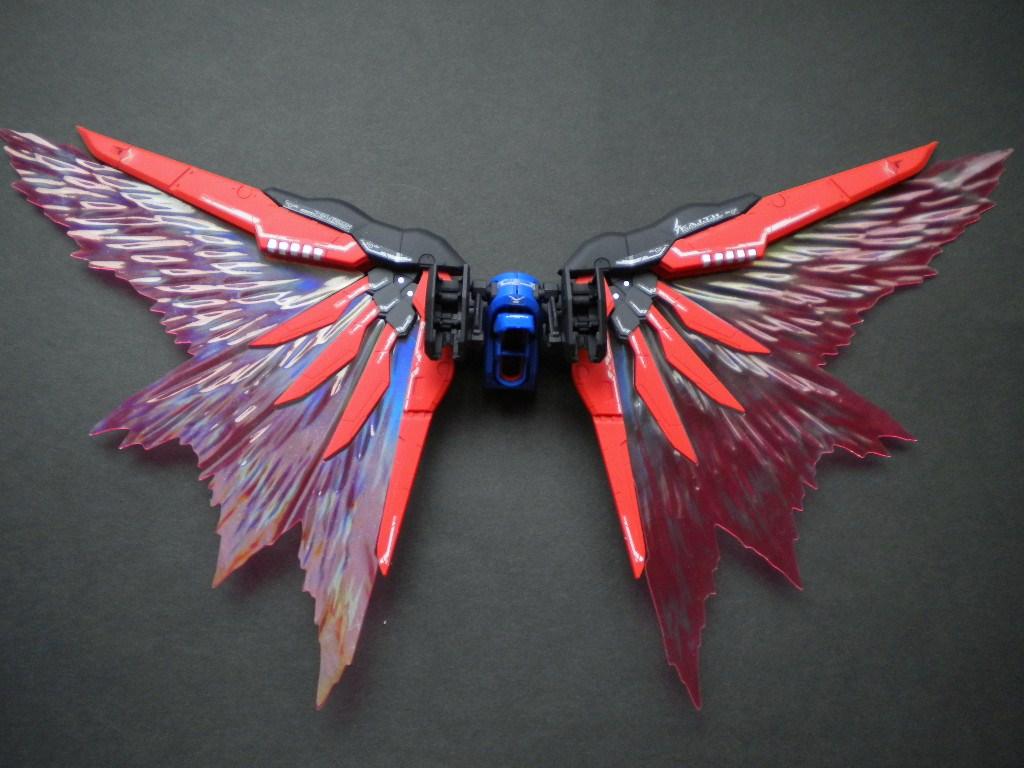 RGデスティニー光の翼取付完了_1