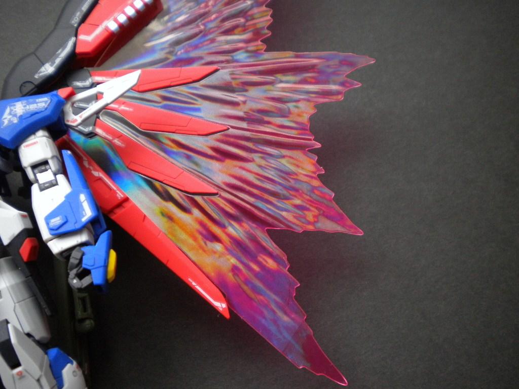 RGデスティニー光の翼拡大下